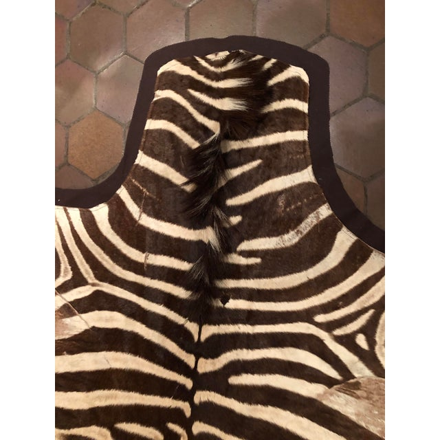 1960s Vintage Burchell Zebra Rug For Sale - Image 4 of 12