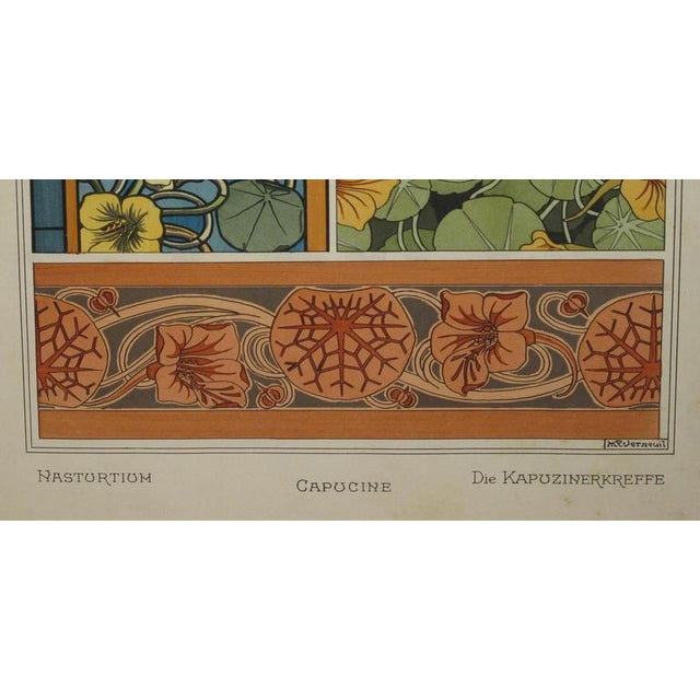 A Rare Set of 3 French Art Nouveau Chromolithographs of Nasturtiums & Sunflowers For Sale - Image 4 of 4