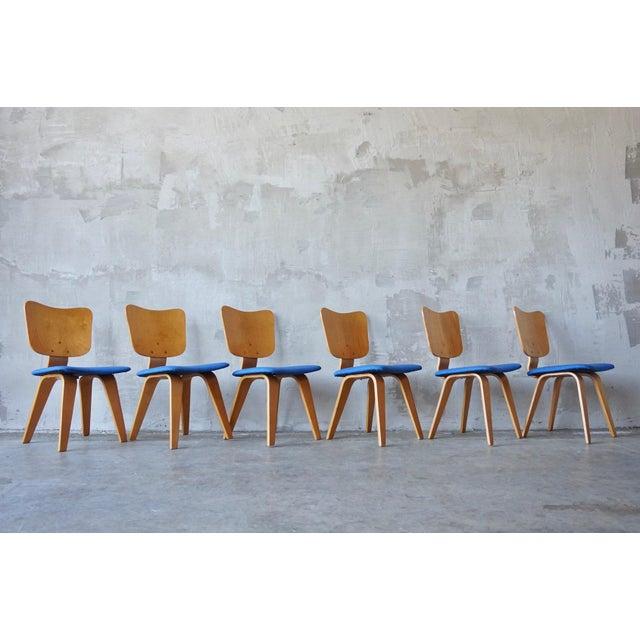 Thaden-Jordan Furniture Co. Set of 6 Thaden Jordan Dining Chairs For Sale - Image 4 of 8
