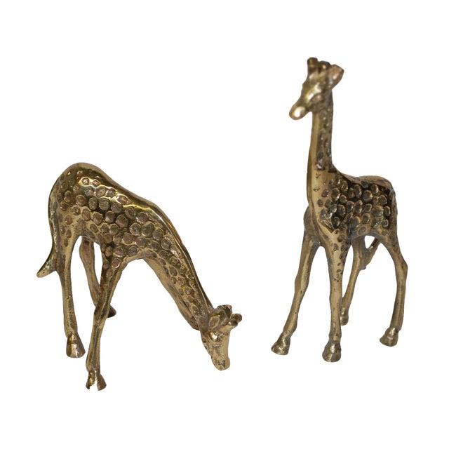 1950s Brass Giraffe Figurines - A Pair - Image 1 of 3