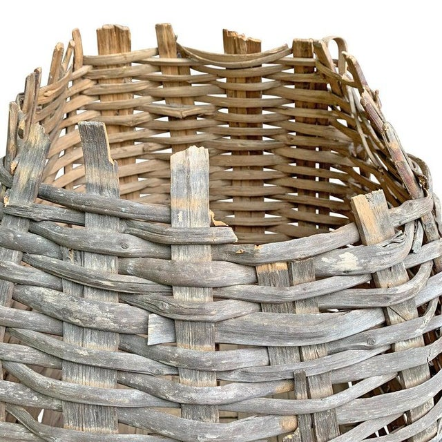 Large 19th Century American Nut Basket For Sale In Chicago - Image 6 of 11