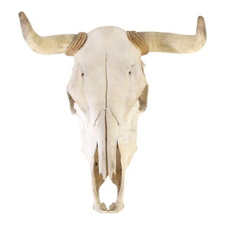 Authentic Vintage Southwestern Wall Mounted Cow Skull For Sale