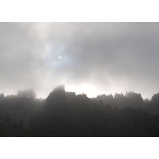 "Gaétan Caron ""Early Morning Sun & Fog"", Northern California Coast. (Framed) Photograph. 2015 For Sale"