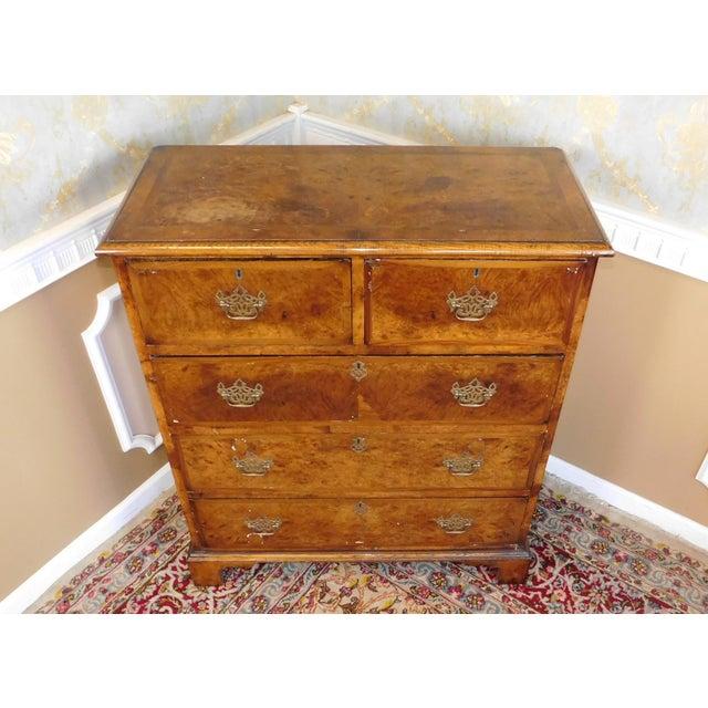 Antique American Walnut & Elm Bedroom Chest - Image 5 of 10