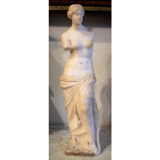 19c Italian Marble Figurine of Venus De Milo For Sale - Image 4 of 12