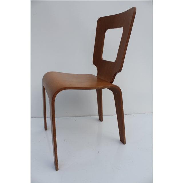 Thaden Jordan Mid-Century Bentwood Birch Chair For Sale - Image 9 of 11