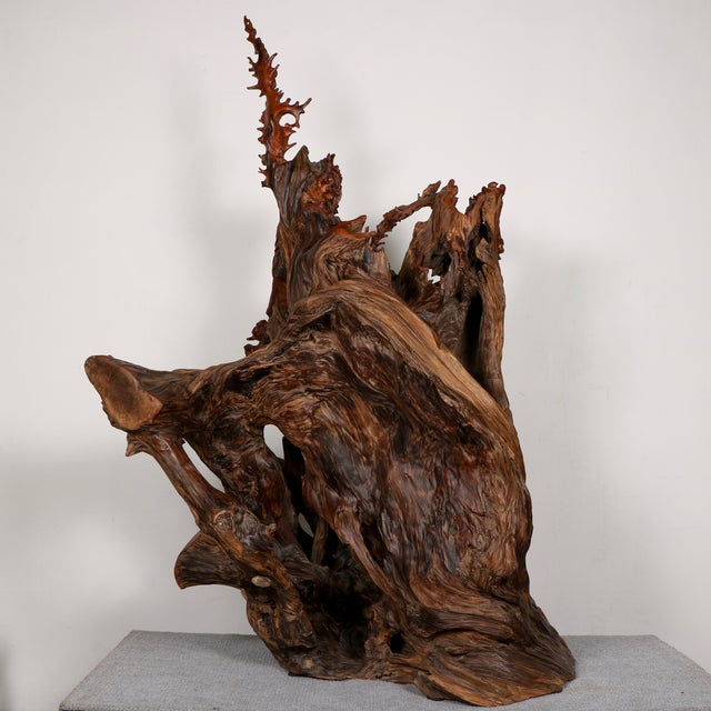 Carved Root Sculpture - Image 3 of 11