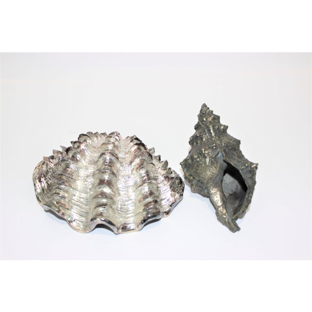 Shell Sculptures Ribbed Clam and Conch - a Set of 2 For Sale - Image 4 of 12