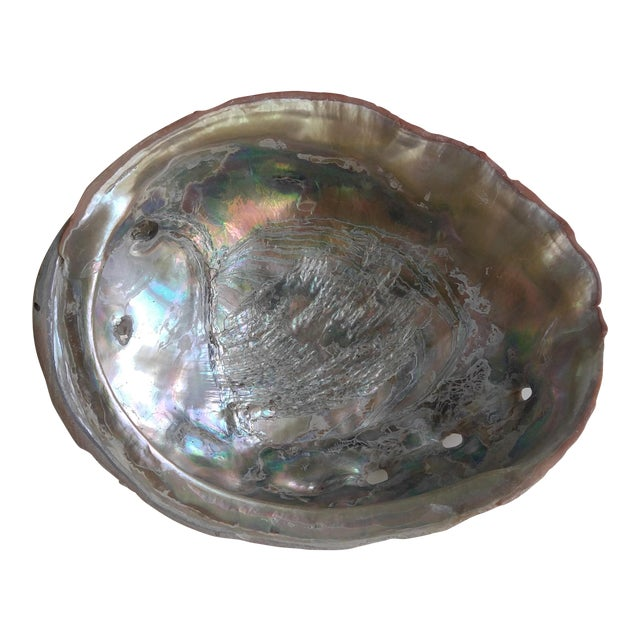 Red Abalone Shell Object For Sale
