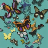 Image of Christian Lacroix Butterfly Parade Lagon Wallpaper For Sale