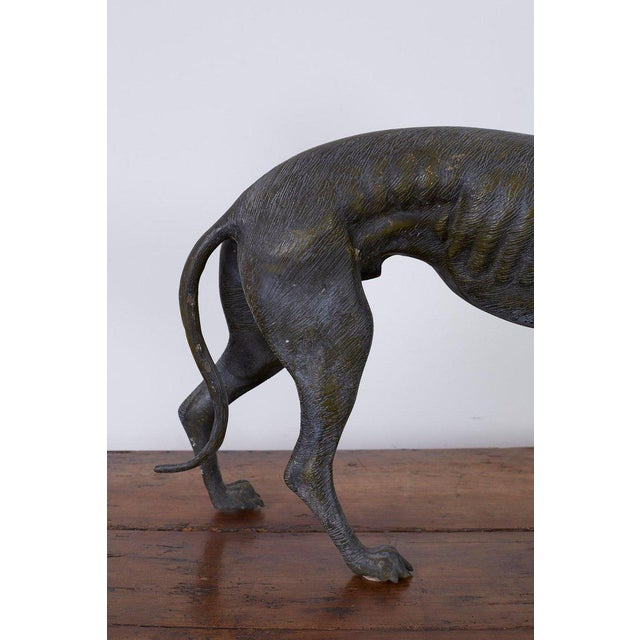 Mid 20th Century Pair of Bronze Whippets or Greyhound Dog Sculptures For Sale - Image 5 of 13