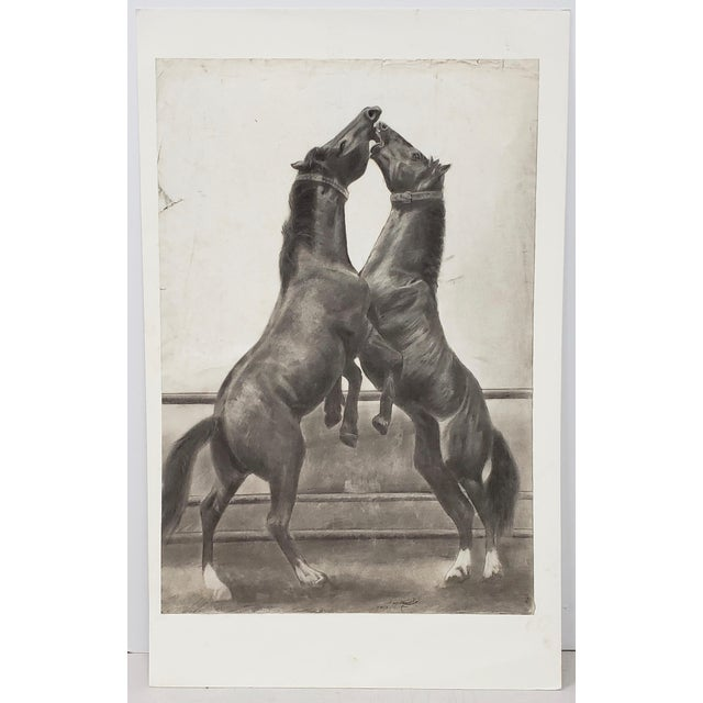 """""""The Challenger"""" Original Charcoal on Paper Mid 20th Century For Sale - Image 10 of 10"""