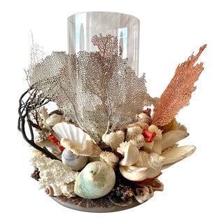 Seashell Hurricane Lantern For Sale