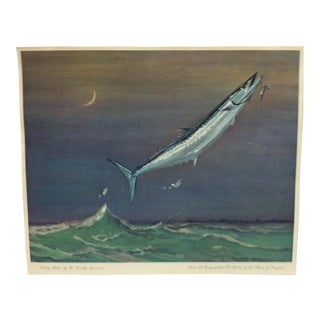 "1960s Vintage ""King Fish"" W. Goadby Lawrence Color Print For Sale"