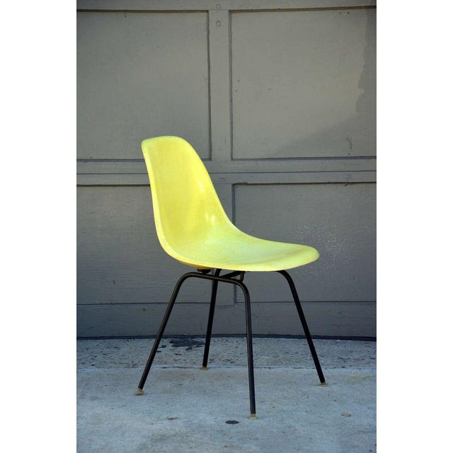 Eames Chairs by Herman Miller - Set of 4 For Sale - Image 4 of 9