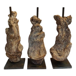 Vine Root Table Lamp Bases For Sale