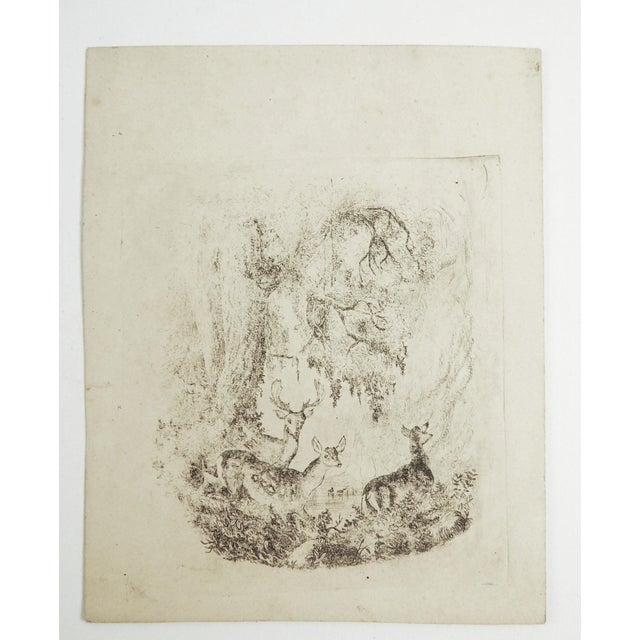 Tiny Deer in Forest Etching For Sale - Image 4 of 4