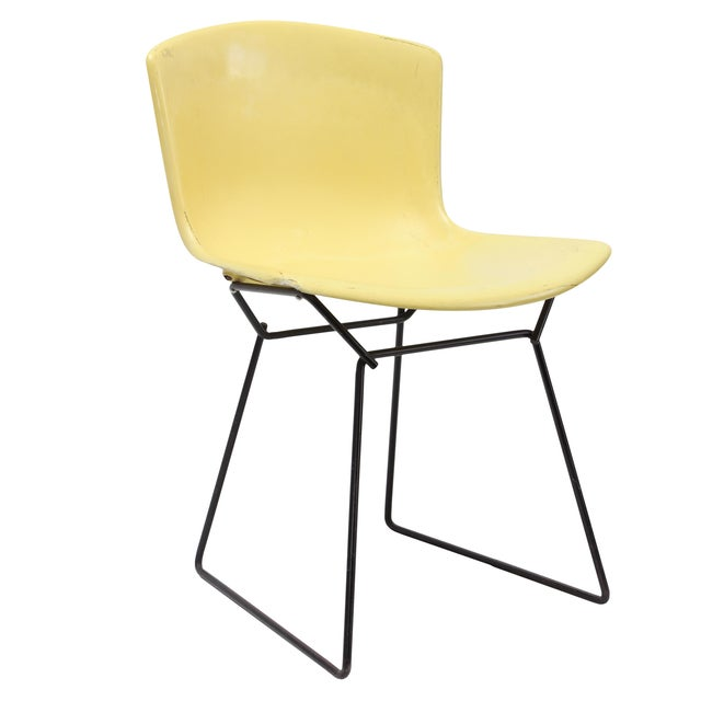 Knoll Bertoia Fiberglass Side Chair Yellow For Sale