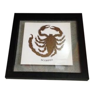 Piero Fornasetti Zodiac Scorpio Print For Sale