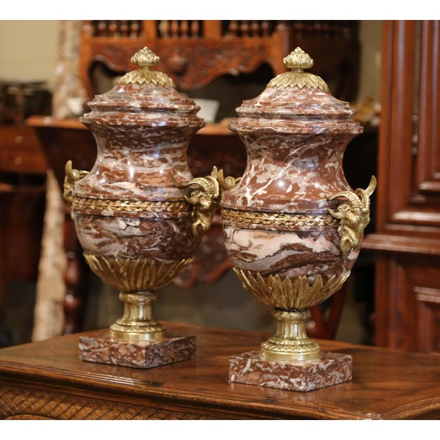 19th Century French Carved Variegated Marble and Bronze Cassolettes-A Pair For Sale In Dallas - Image 6 of 12