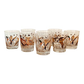 1960s Pheasant Bar Glass Tumblers, Set of 8 For Sale