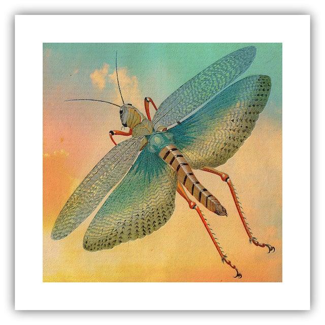 Antique 'Flying Grasshopper' Archival Print - Image 2 of 4
