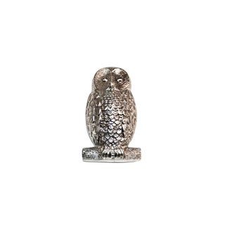 Big-Eyed Owl Silver Door Knocker