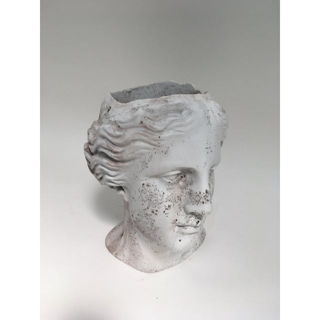 Italian Weathered Venus Bust Head Planter For Sale - Image 3 of 8