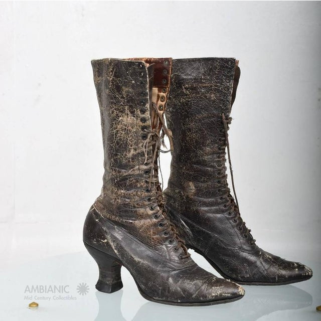 Animal Skin Pair of Ladies Victorian High-Top Leather Boots For Sale - Image 7 of 9
