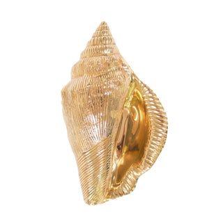 Solid Brass Conch Shell Door Knocker