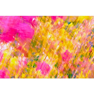 """Summer's Day"" Abstract Photograph For Sale"