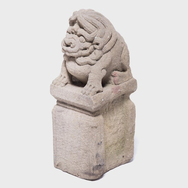 Asian 19th Century Chinese Lion Dog Protector For Sale - Image 3 of 6