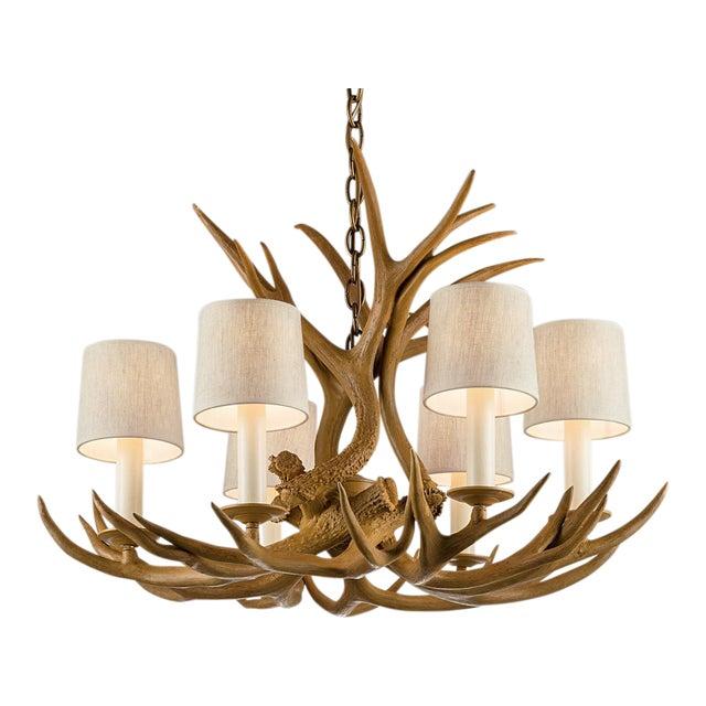 Natural antler light For Sale