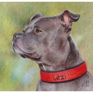 Framed Dog Portrait For Sale