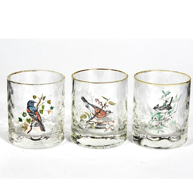 1960s set of six glass bar tumblers with assorted birds. No maker's mark.
