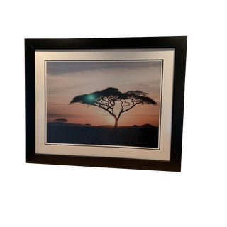Large Color Photograph, Framed of African Landscape, 1980's For Sale