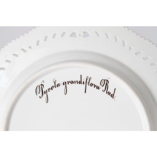 Royal Copenhagen Flora Danica Pierced Plates #20/3554 For Sale - Image 12 of 13