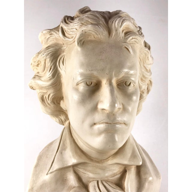 Contemporary 20th Century Contemporary Alexander Backer Co Ivory Colored Beethoven Bust For Sale - Image 3 of 11