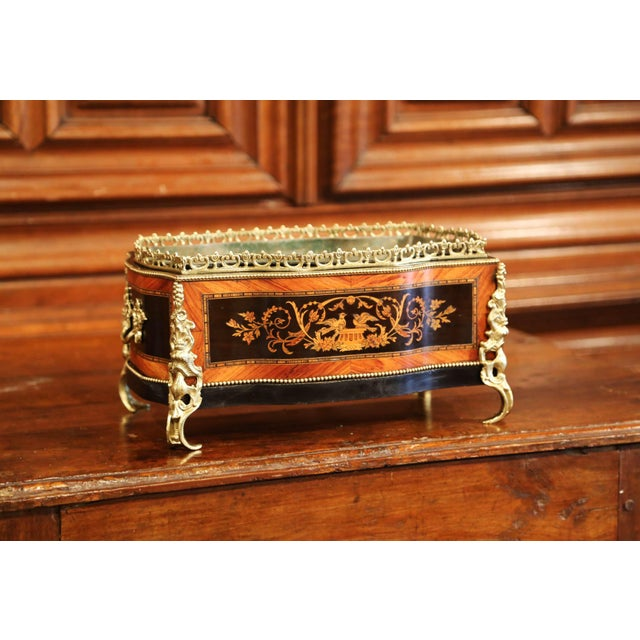 Gold 19th Century French Napoleon III Rosewood Planter With Marquetry & Bronze Decor For Sale - Image 8 of 10