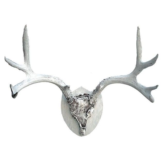 Mounted Deer Antlers - Image 1 of 5