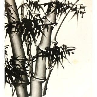 Chinese Bamboo Black and White Painting