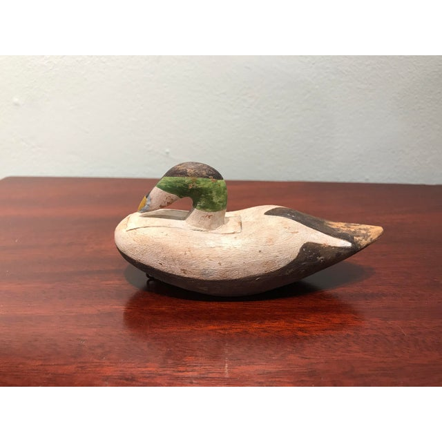Beautiful hand carved and hand painted wood Duck decoy with great character and elegant. Signed D Adamo