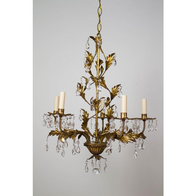 Italian gold leaf five light chandelier. Metal chandelier with restored antique gold finish. Completely restored and...