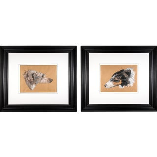 Early 20th Century Wolfhound Portrait Mixed-Media Drawings on Paper, Framed - a Pair For Sale
