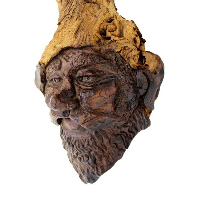 Detailed Burl Wood Carving of an Elf or Gnome Face Sculture - Image 5 of 9