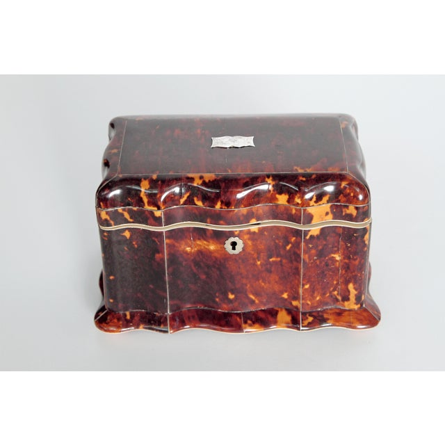 Tortoise Shell Tea Caddy - Image 2 of 11