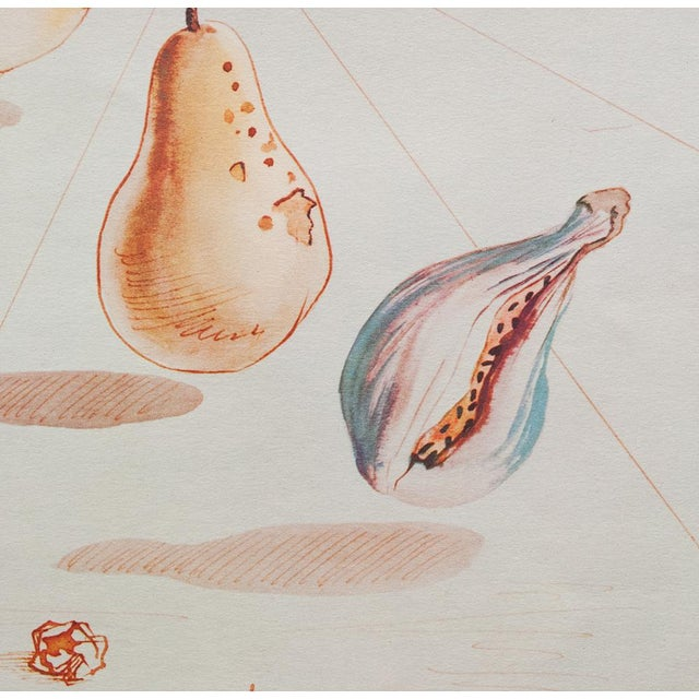 Tan 1955 Dali Fruits Original Period Lithograph From the Mrs. Albert D. Lasker Collection For Sale - Image 8 of 13