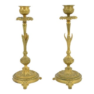 Late 19th Century French Louis XV Style Gilt Bronze Candle Sticks - a Pair For Sale