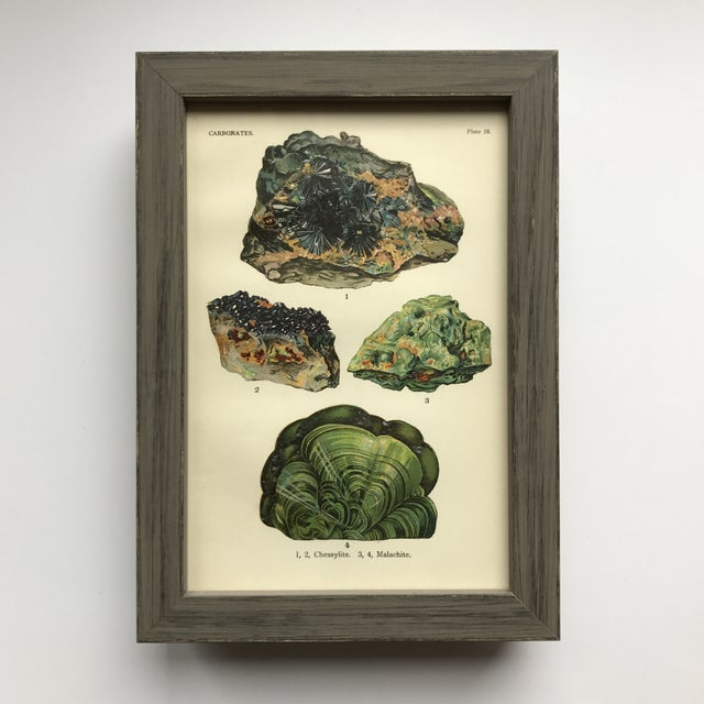 1910s Early 20th Century Antique Mineral Print Collection - Set of 40 For Sale - Image 5 of 12