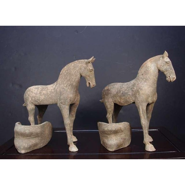 Ceramic Pair Early Tang Dynasty Grey Pottery Striding Horses with Removable Saddles For Sale - Image 7 of 8